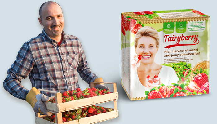 FairyBerry: Unglaubliche Ernte großer und leckerer Erdbeeren schon nach 1 Monat!