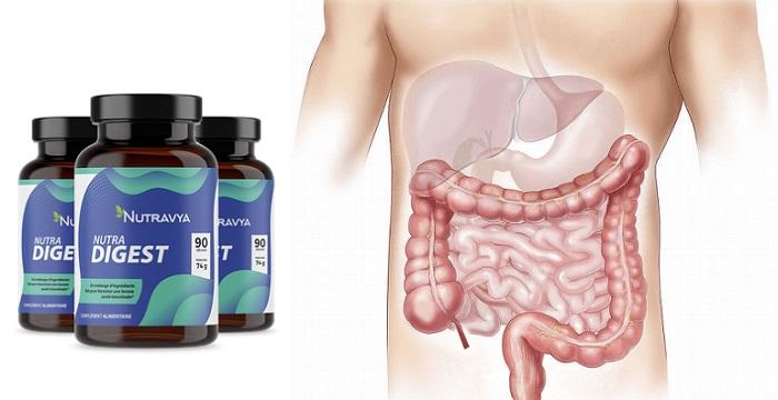 Nutra Digest für den Magen-Darm-Trakt: schnelle Hilfe bei Schmerzen und Sodbrennen!